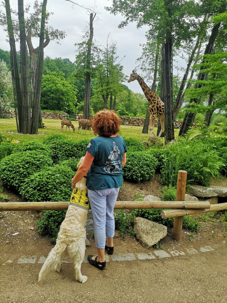 2021-06-zoo-plzen