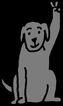Časté dotazy o asistenčních psech
