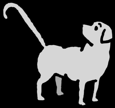 Výcvik vodících psů pro nevidomé a slabozraké